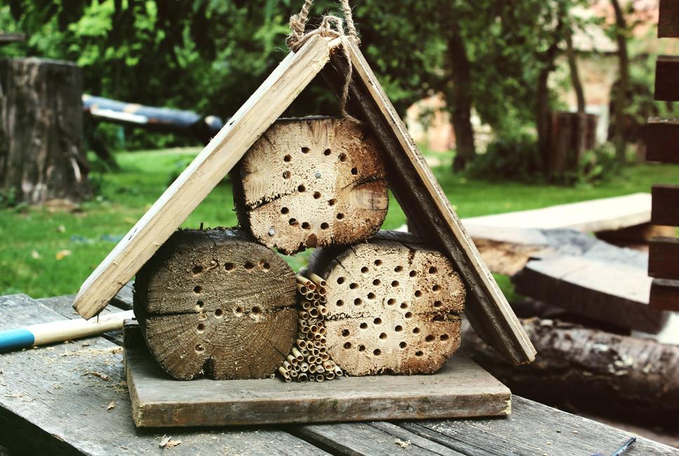 Zostań pszczołacielem – warsztaty budowania hoteli dla owadów
